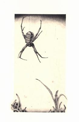 根本佳奈_spider#1_400