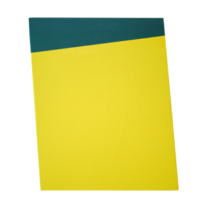 大矢亨_indeterminate-form-painting(green,yellow)