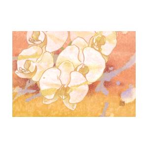 し_社本奈美_祝福の花